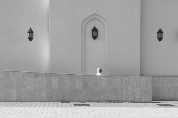 Страны Персидского Залива. Оман иАрабские Эмираты.