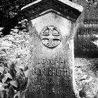 Немецкое кладбище вМоскве