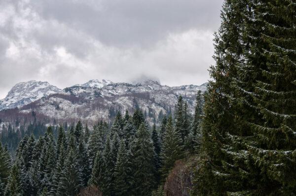 Черногория 2014. Национальный парк Дурмитор.