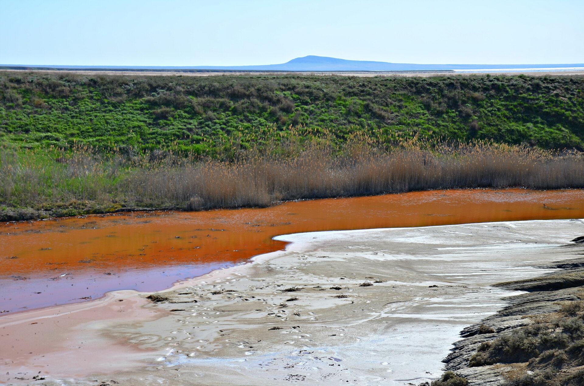 Горькая река, солёные берега