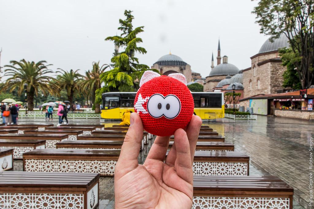 Шарокот вСтамбуле