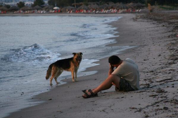 Греческие острова Кос, Нисирос, Калимнос