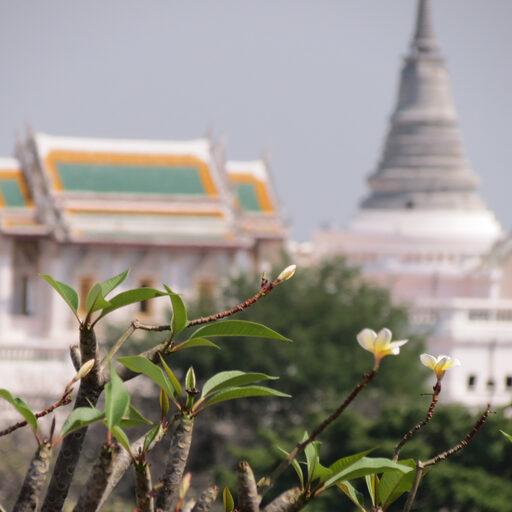 Первый раз в Тайланде. Да бывает и такое!