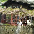 Китай. Часть 4. Сады Сучжоу