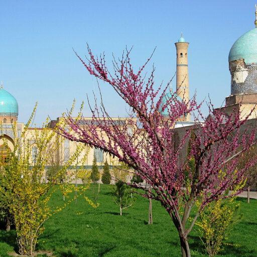 Узбекистан ! Вы только посмотрите на эту красоту !